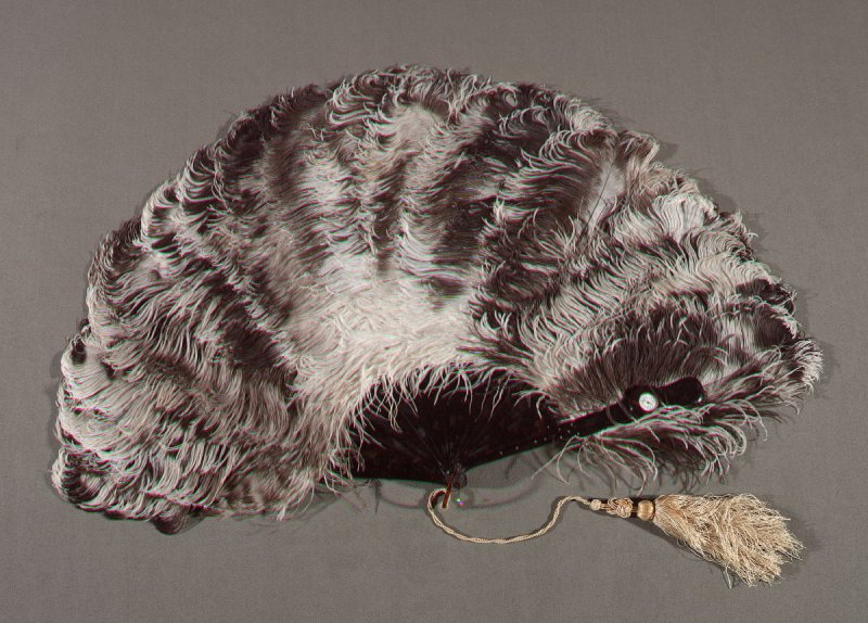 Ostrich Feathers with Watch