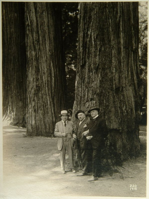 various photographs of various men in the redwoods