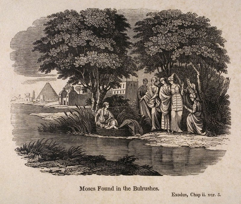 Biblical Scenes: Moses Found in the Bulrushes