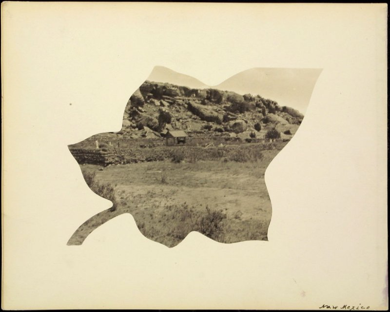 Verso: New Mexico landscape (format in the shape of a leaf)