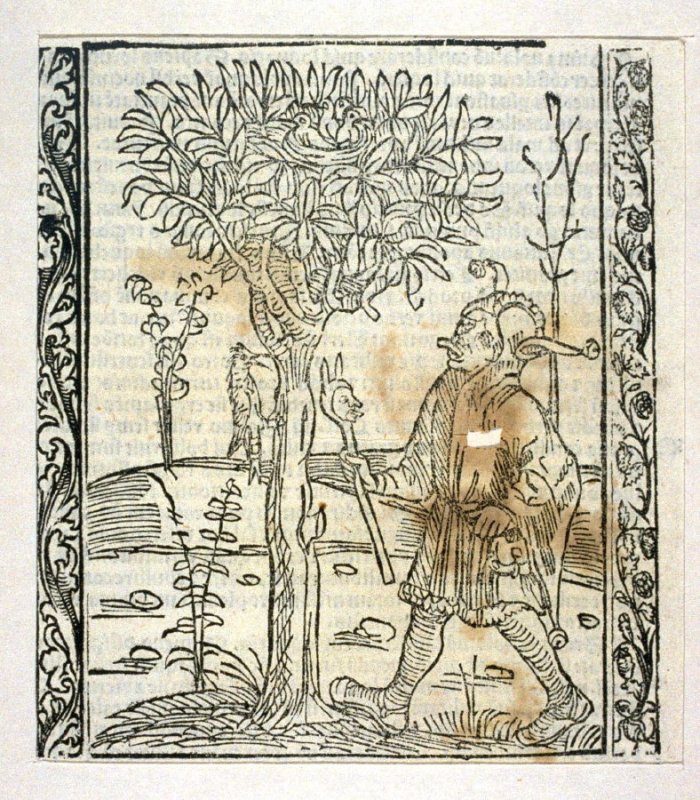 """The Chatter Fool: woodcut illustration for the original edition of the """"Narrenschiff"""" (Ship of Fools), taken from the Latin reprint edition Basel"""