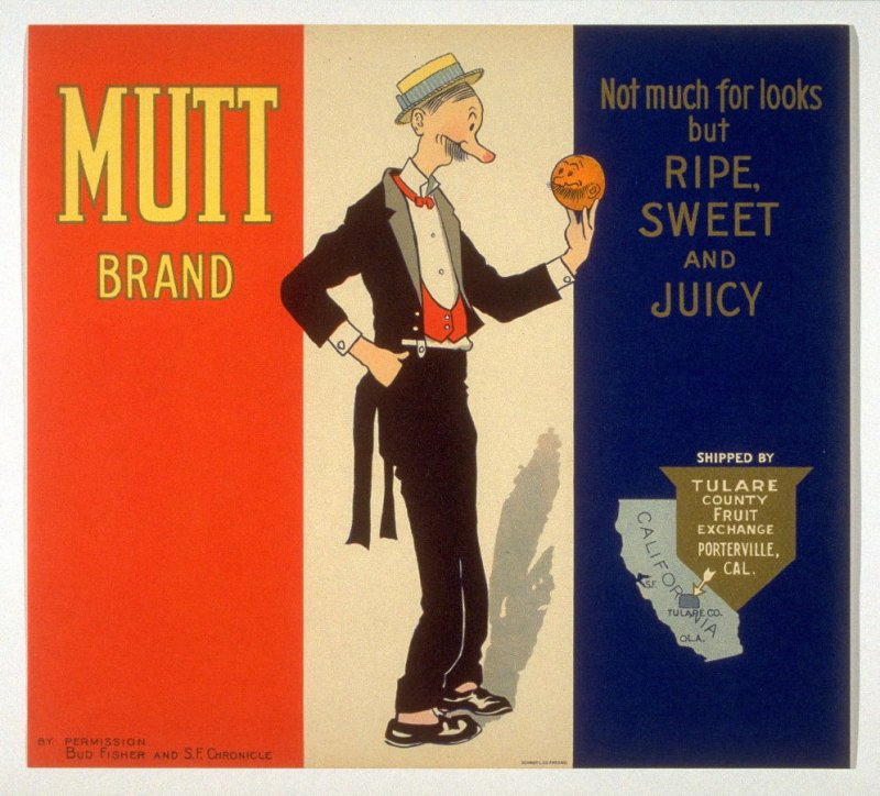 Mutt Brand, Tulare County Fruit Exchange, Porterville, Cal.