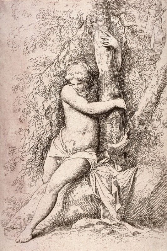 Seated Nude, Holding onto a Tree, copy in reverse after the etching by Salvator Rosa from the series Figurine