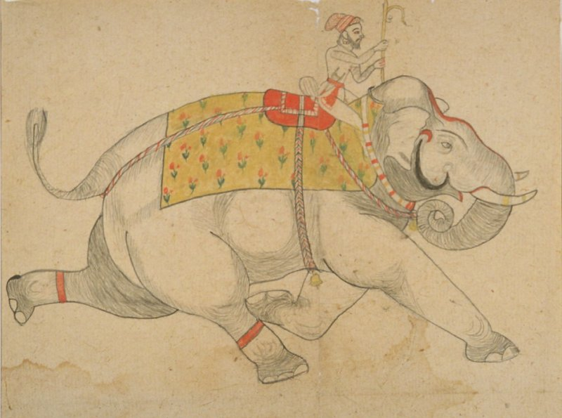Untitled (elephant and mahout holding an ankus)