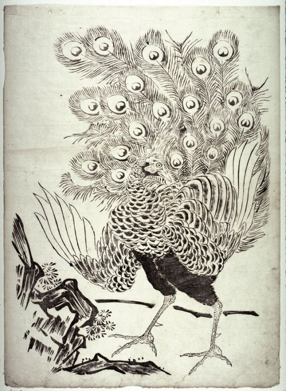 Peacock by Rock from a series in Kano style