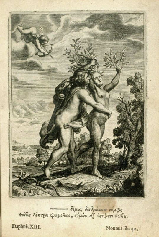 Illustration for Nonnus (Daphne XIII ) opposite page 98 in the book Tableaux du temple des muses by Michel de Marolles (Amsterdam: Abraham Wolfgank, 1676)