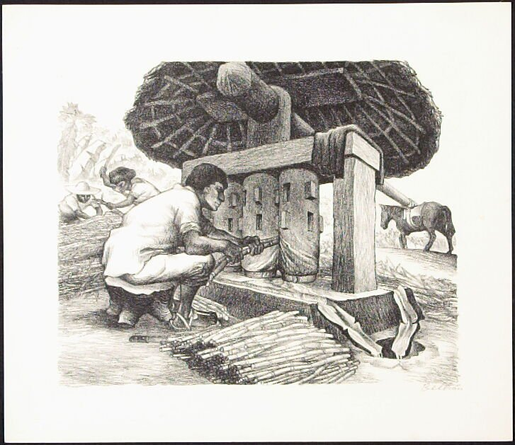 """Grinding Sugar Cane from """"Mexican People"""" portfolio"""