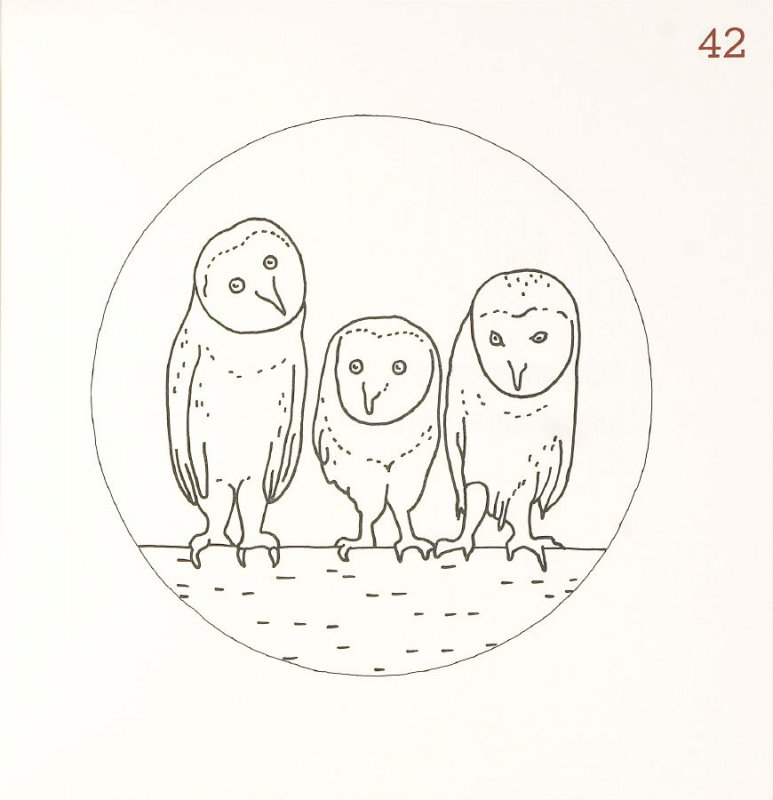 Untitled (Owls), page 42 in Another Name / General Instruction