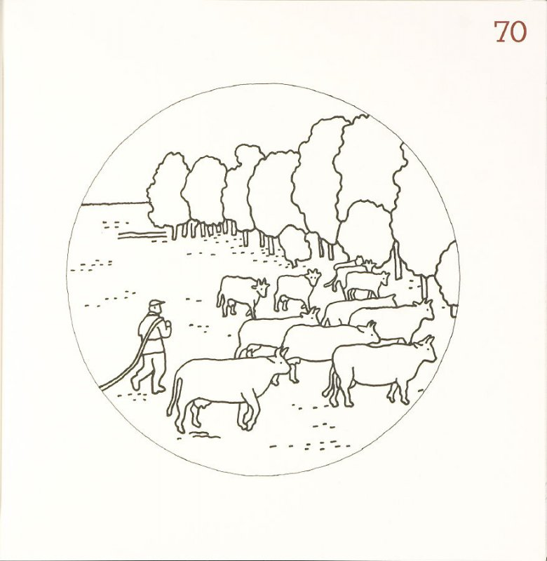 Untitled (Cow Herd), page 70 in Another Name / General Instruction