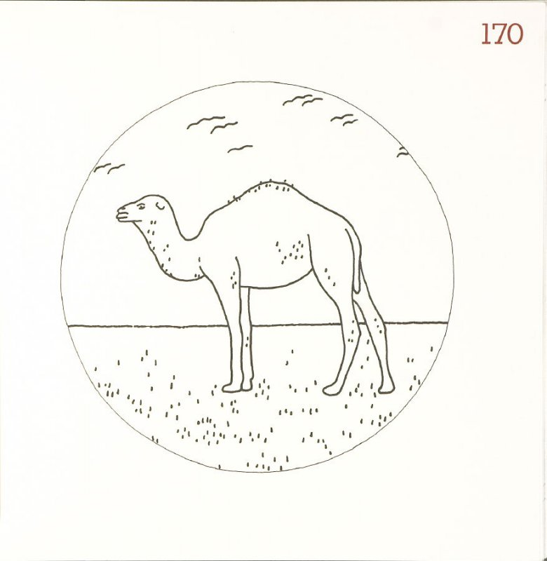 Untitled (Camel), page 170 in Another Name / General Instruction