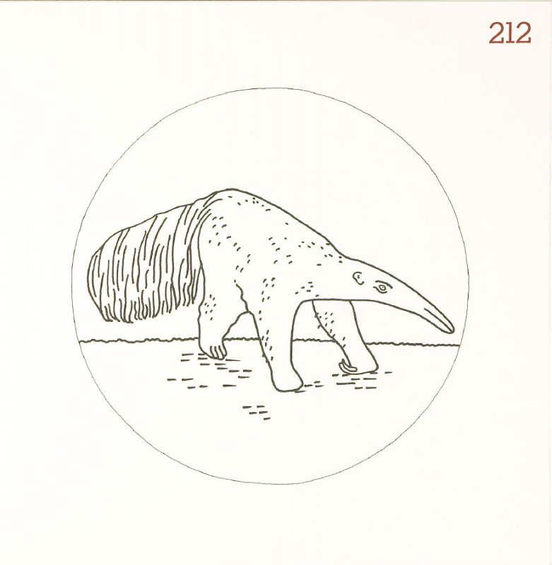 Untitled (Animal), page 212 in Another Name / General Instruction