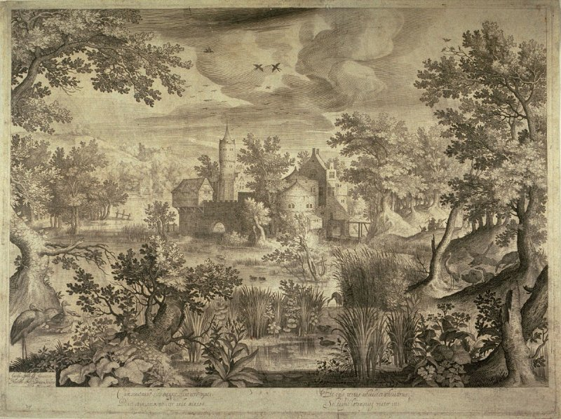 Landscape With Ducks and Waterfowl