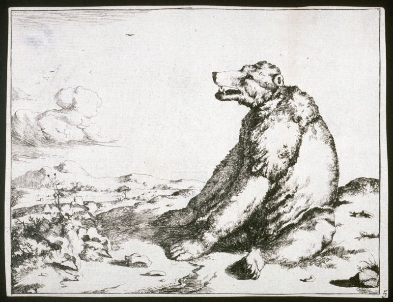 One of eight plates: Bear (Plate 5)