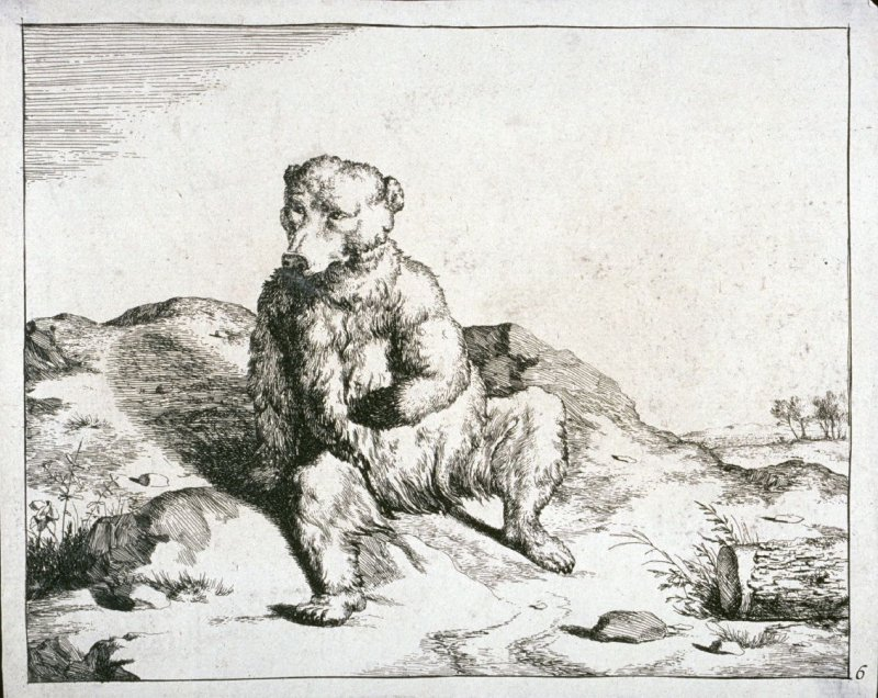 One of eight plates: Bear (Plate 6)
