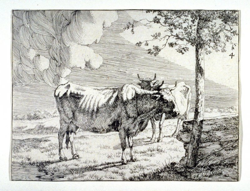 Two Cows near a Tree