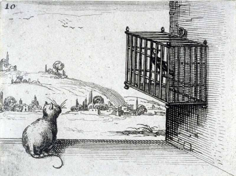 Cat Watching a Bird in a Cage, plate 10 from Lux Claustri