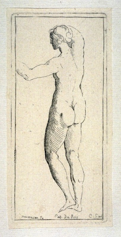 Female Nude Facing Left, from the Cabinet du Roi