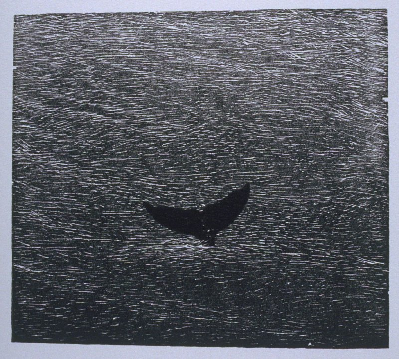 """Whale"" in the book Bestiary by Bradford Morrow (New York: Grenfell Press, 1990)."