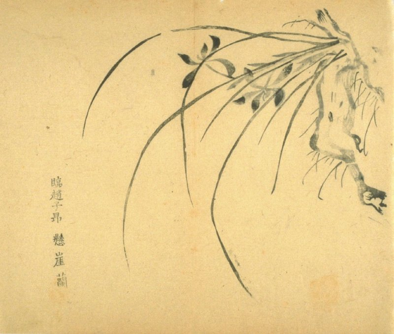 """Overhanging Cliff""; Two Flowers, No.12 from the Volume on Orchids - from: The Treatise on Calligraphy and Painting of the Ten Bamboo Studio"