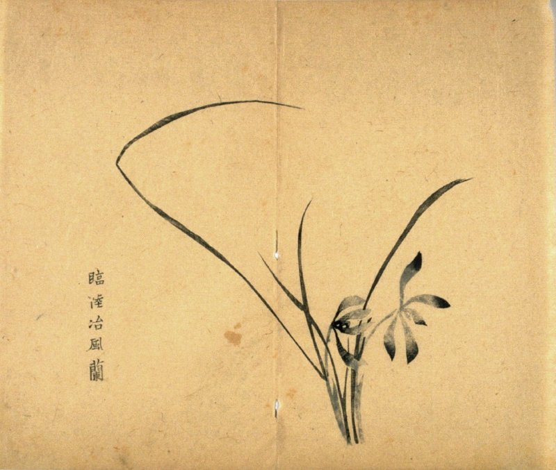 """Clearing Weather""; Two Flowers, leaves bend towards right, No.11 from the Volume on Orchids - from: The Treatise on Calligraphy and Painting of the Ten Bamboo Studio"