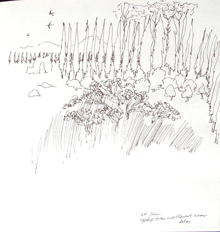Cypress Trees and Flowers Near Arles, Illustration 9 in the book Sketchbook (Paris and Amsterdam)