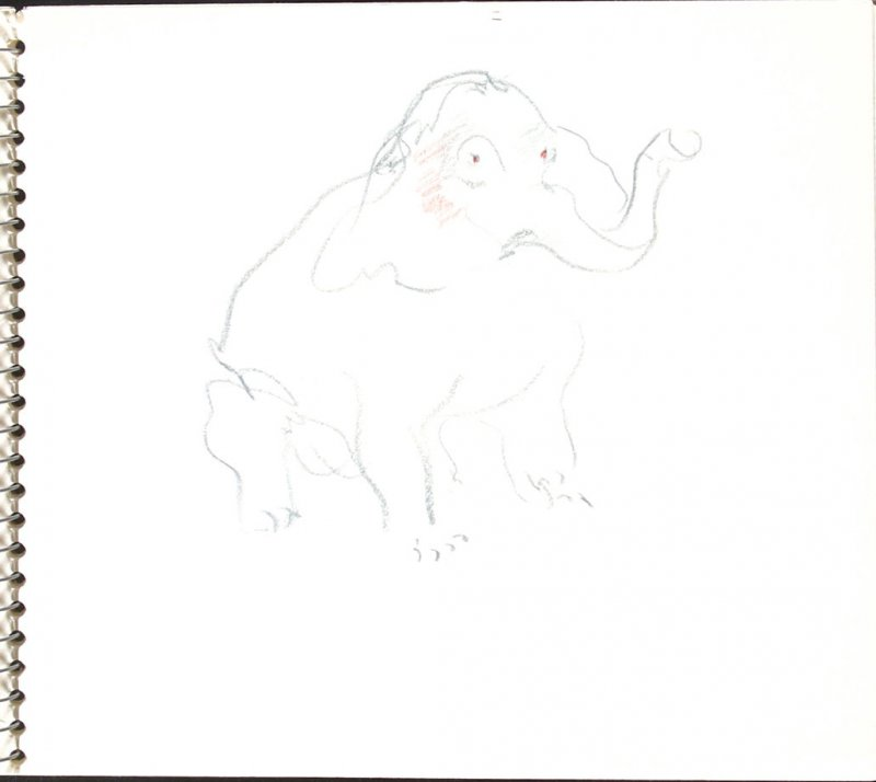 Untitled (Circus elephant), Illustration 29 in the book Sketchbook (Sylvia)