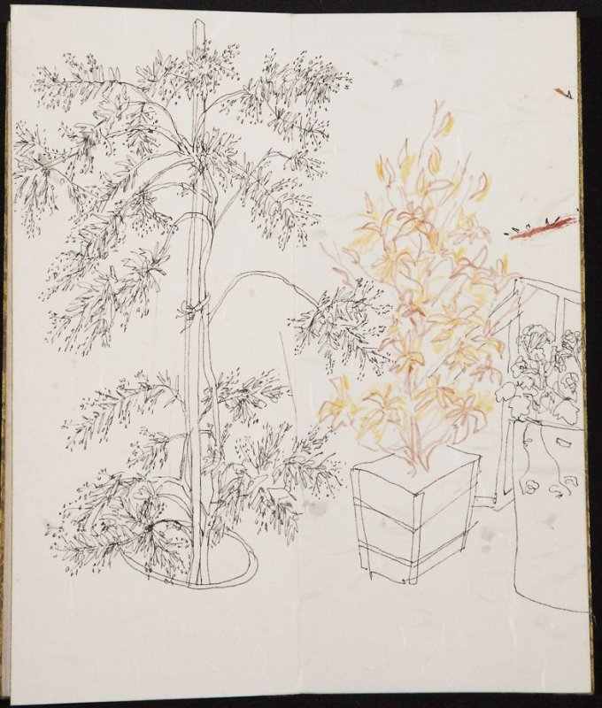 Untitled (Two trees and a shrub), Illustration 9 in the book Blanche's Pier (sketchbook)