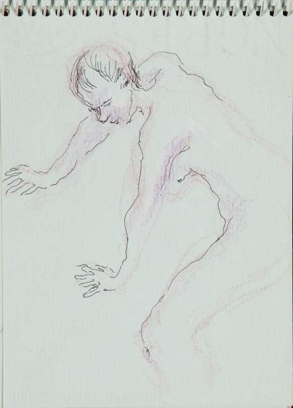 Illustration 5 in the book Sketchbook (Nude Studies of Jonni)
