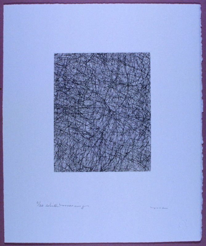 Plate 9 in the book LIGHT A Suite of 10 Etchings & Poems (Fairfax: Jungle Garden Press, 1998)