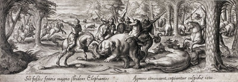 Elephant Hunt, from the series Venationis, piscationis, et aucupii typi (Hunting, Fishing and Fowling Scenes)