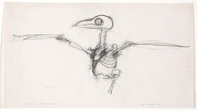 Untitled (Crow)