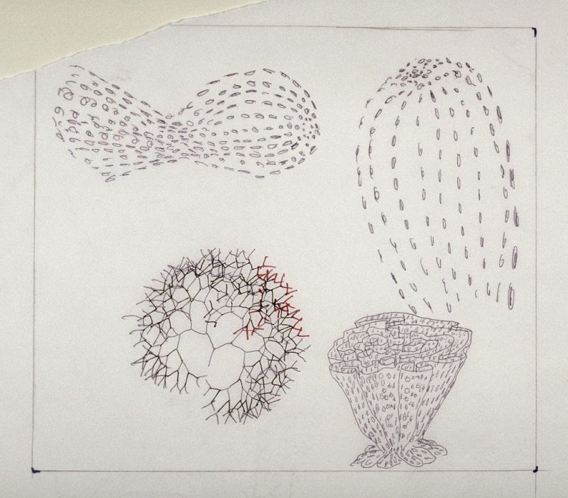 Drawing for Untitled (Small Chalice Composition)