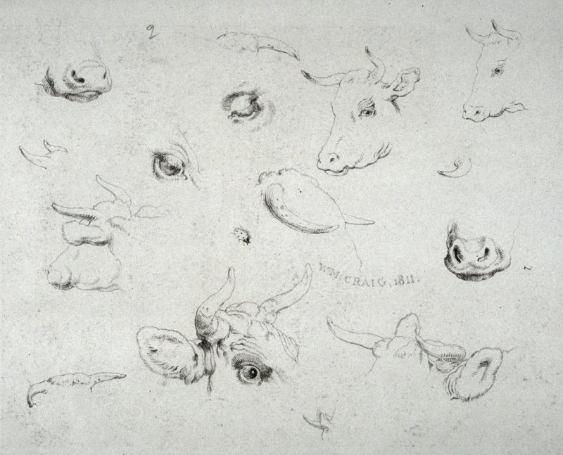 Plate 2 from - Landscape Animals in a Series of Perspective Studies