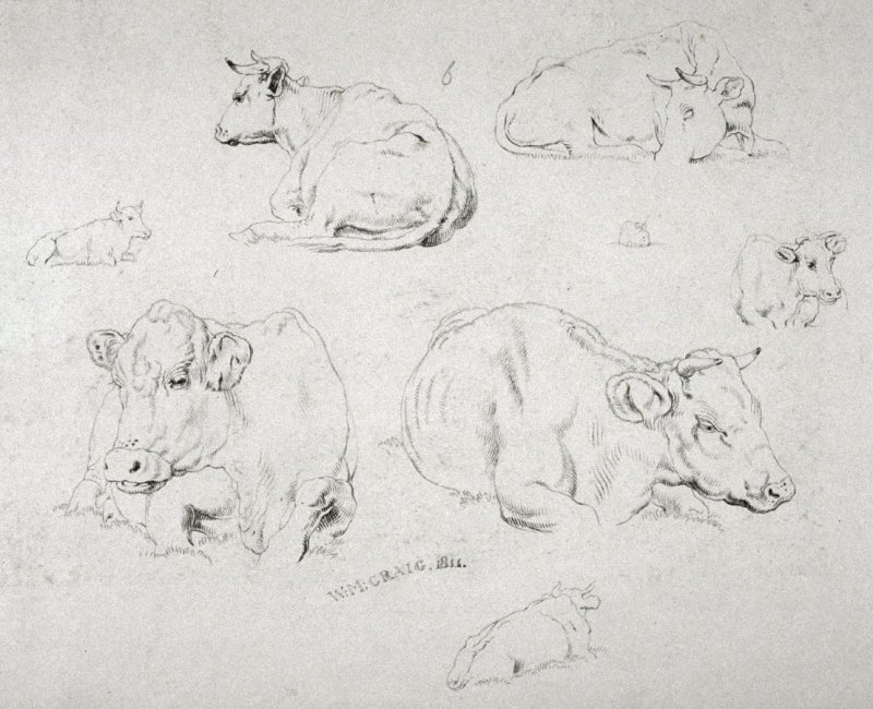 Plate 6 from - Landscape Animals in a Series of Perspective Studies