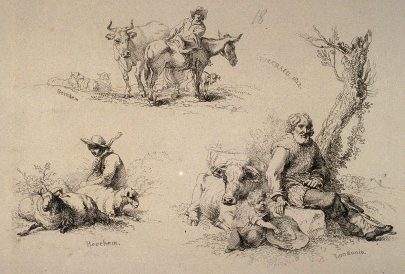 Plate 18 from - Landscape Animals in a Series of Perspective Studies