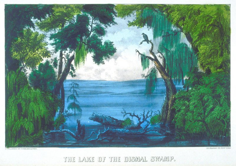 The Lake of the Dismal Swamp