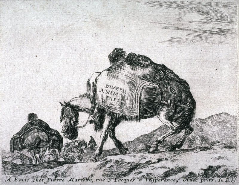 Title Page from the series Diversi Animali
