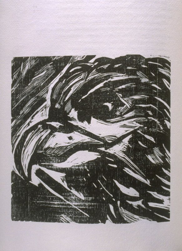 """""""Eagle,"""" illustration in the book The Apocalypse/The Revelation of Saint John The Divine/The Last Book of the New Testament from the King James Version of the Bible, 1611, with Twenty-nine Prints from Woodblocks Cut by Jim Dine. (San Francisco: The Arion"""