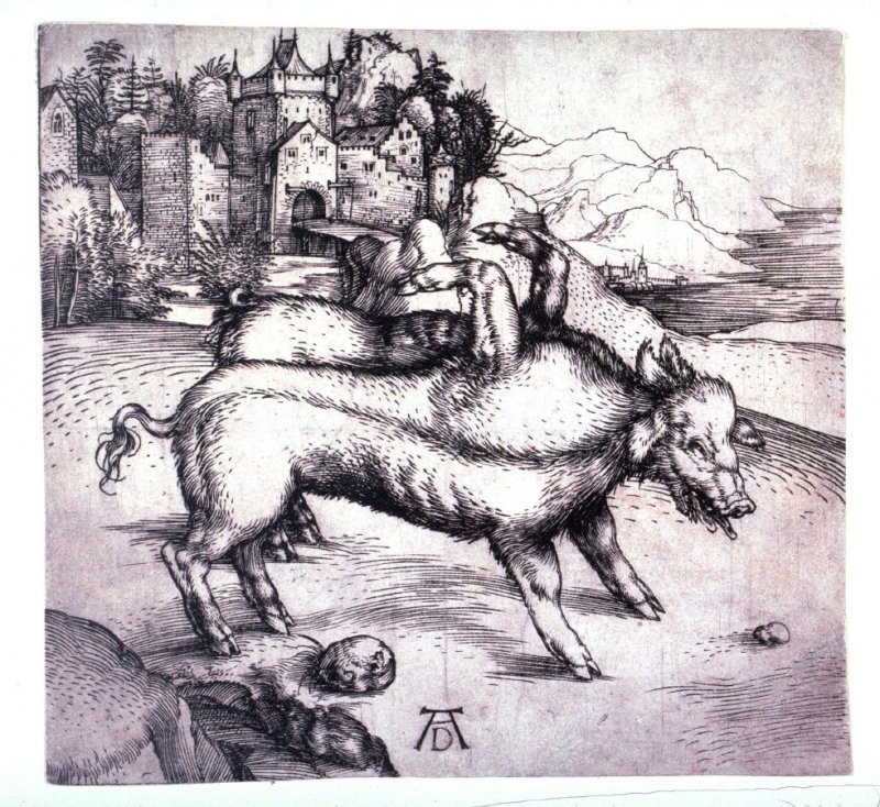 The Monstrous Pig (or Sow) of Landser
