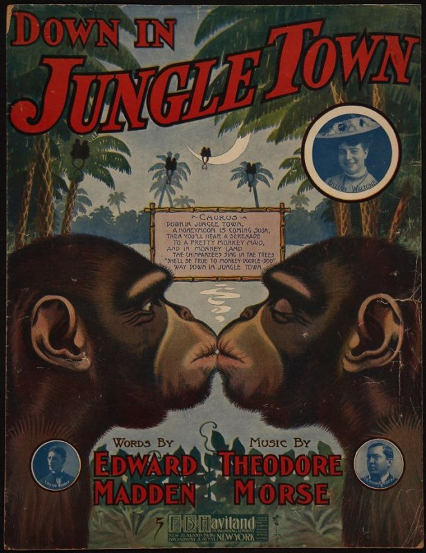Down in Jungle Town