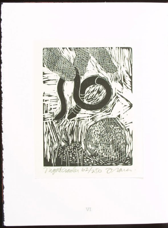 Nightcrawler, plate 6 in the portfolio section, Portfolio, Ten Prints Related to the Pastime of Fishing by Ke Francis, seventeenth image in the book Jugline: A Fish Tale and a Portfolio of Prints (Tupelo MS: Hoopsnake Press, 1992)