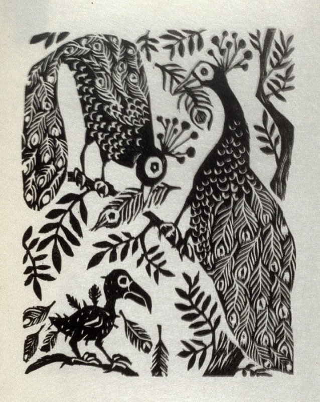 The Daw with the Borrowed Feathers, illustration for the seventh fable in the book, Known Fables (New York: Spiral Press, 1964)