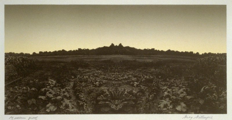 The Garden at Dusk, plate 7 in the portfolio Six Images (San Francisco: Editions Press, 1986)