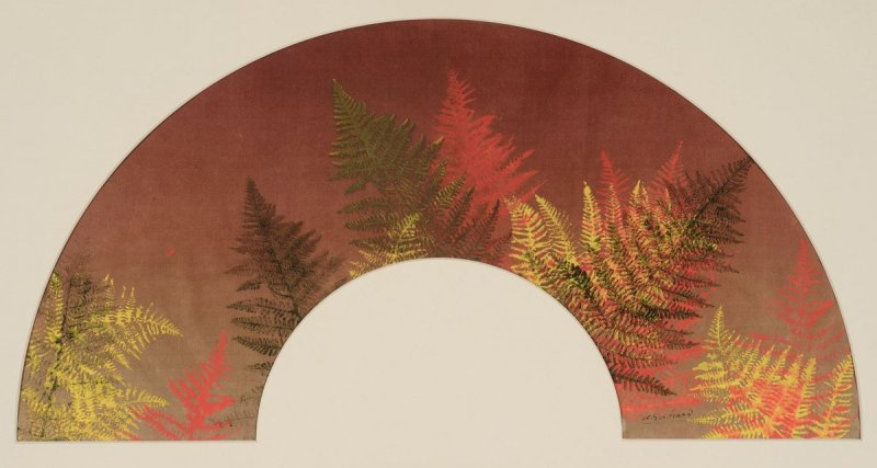 Fan-shaped Composition: Ferns