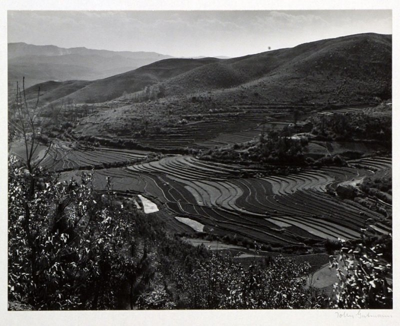 Stairways to the skies are terraced paddy fields climbing up the mountains of western Yunnan.