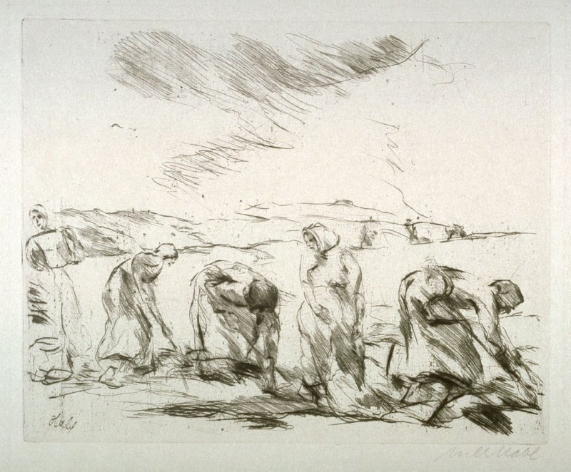 Peasant women working in the field