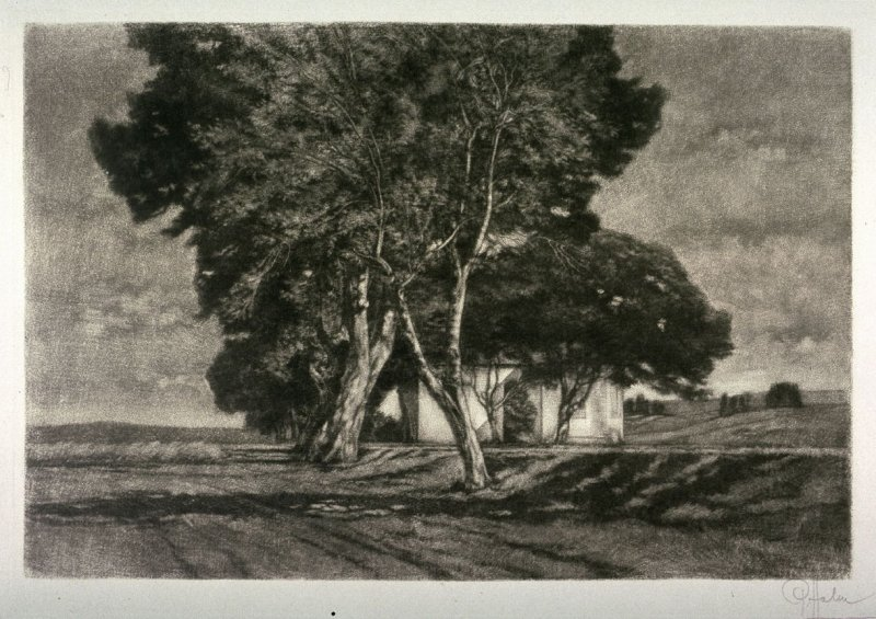 House with trees in middle of field