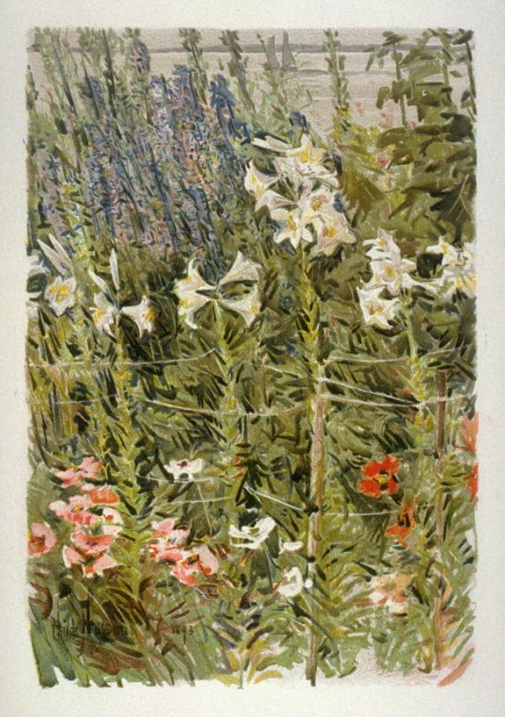 Larkspur and Lilies