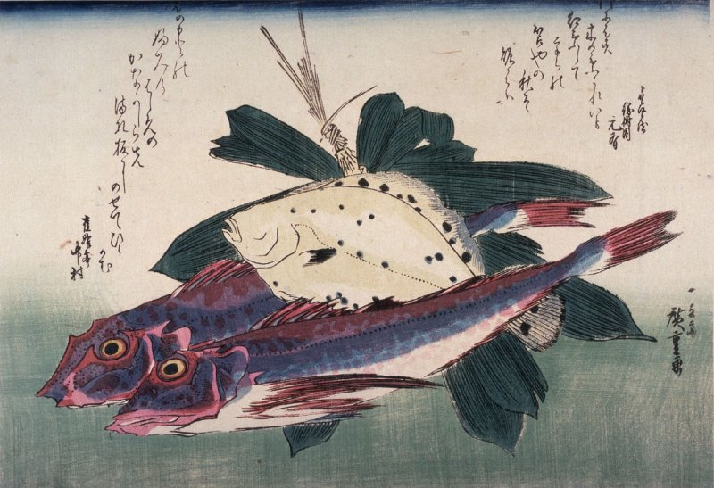 Untitled (Kanagashira, Konohakarei, Bamboo Grass),one of ten from an untitled series of fish