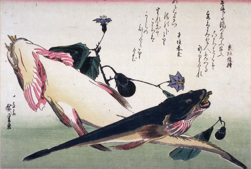 Untitled (Two Kochi and Eggplants),one of ten from an untitled series of fish